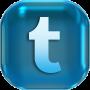 logo twitter knop
